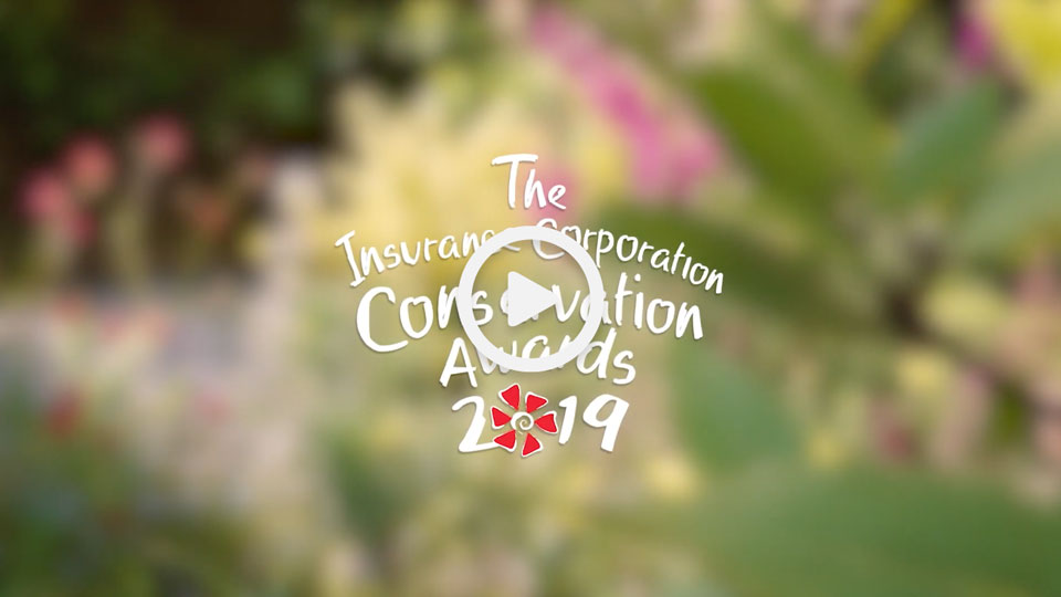 The Insurance Corporation Awards logo on top of a blurred foliage photograph